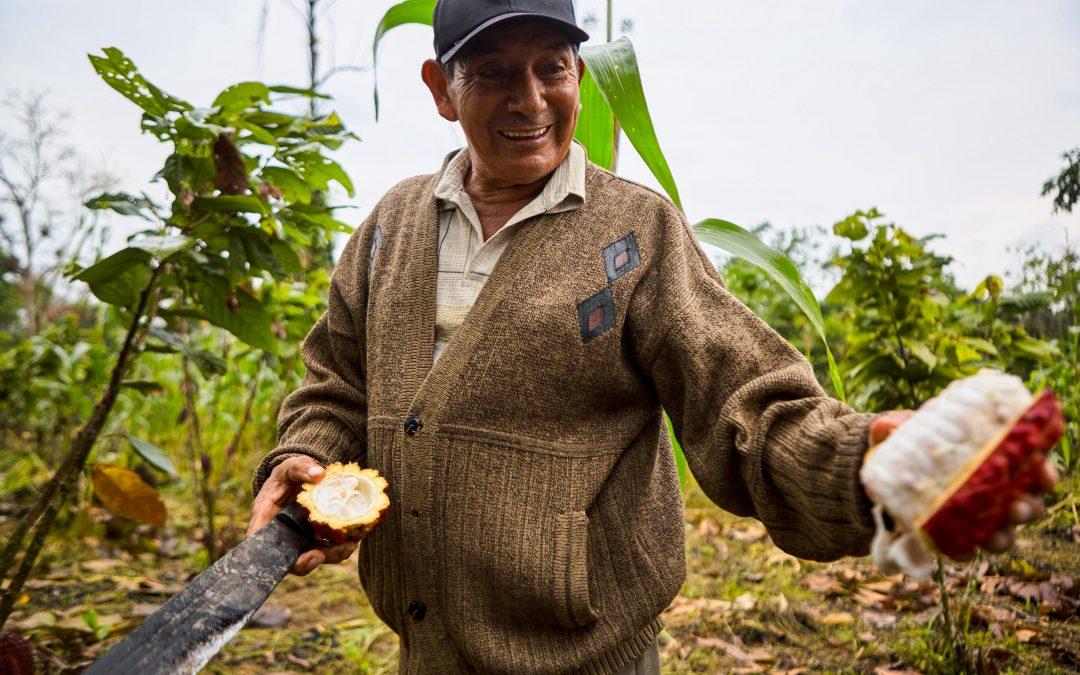 Anecacao convocó a productores a primera edición del concurso Cacao de Excelencia Ecuador 2020